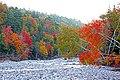 Colours Everywhere (15531309851).jpg
