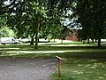 Commemorative oak trees, St Nicholas Park, Warwick - geograph.org.uk - 1399857.jpg