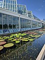 Como Park Zoo and Conservatory - 25.jpg