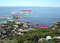 Coral Gardens Oudekraal from the road 1b DSC07252.jpg