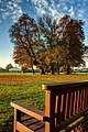 Cottingham Park IMG 6335 - panoramio.jpg