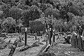County Wicklow - Glendalough - 20190219010911.jpg