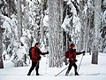 Couple Skiing at Teacup Lake, Mt Hood National Forest (22826649044).jpg