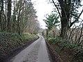 Covet Lane near Kingston. - geograph.org.uk - 323388.jpg