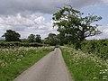 Crabtree Lane - geograph.org.uk - 438606.jpg