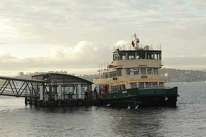How to get to Cremorne Point with public transport- About the place