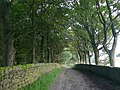 Cross Gates Lane, St Ives Estate, Harden - geograph.org.uk - 952860.jpg