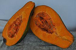 Cucurbita moschata (giraumon 4).jpg