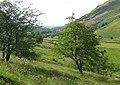 Cwm Berwyn, Ceredigion - geograph.org.uk - 910649.jpg