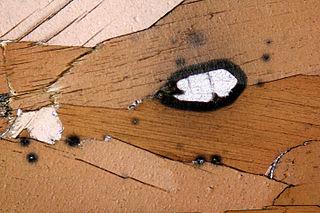 Pleochroic halo Geological phenomenon