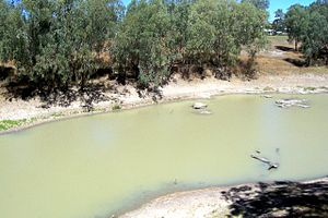 Darling River - Darling River at Louth