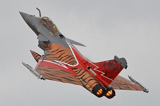 Dassault Rafale C '142 - 113-GU' (14421567820)