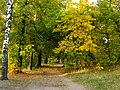 Daugavpils, Latvia - panoramio (29).jpg