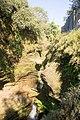 Davis Fall, Nepal-WLV-1770.jpg