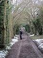 Dead lane, Mistley - Manningtree, Essex - panoramio.jpg