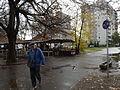 Debrecen, 2013. november 22. 085.jpg