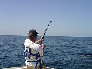 Deep Sea Fishing In Gulf of Mexico