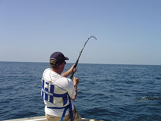 Fishing rod - Fishing with a fishing rod