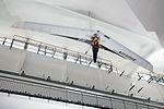 Deltaplano ala rigida Stratos Museo scienza e tecnologia Milano 012.jpg
