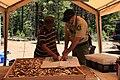 Deschutes National Forest Recreation mushroom havester (36353851044).jpg
