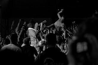 Watkin Tudor Jones - Image: Die Antwoord Coachella 2010 Ninja Crowdsurfing