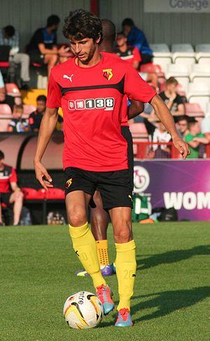 Diego Fabbrini - Fabbrini playing for Watford in 2014