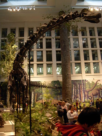 Dippy - Dippy on display at the Carnegie Museum of Natural History