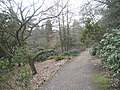 Distant seat on Battleston Hill East at RHS Wisley - geograph.org.uk - 1171324.jpg