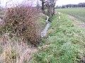 Ditch between fields - geograph.org.uk - 1064402.jpg