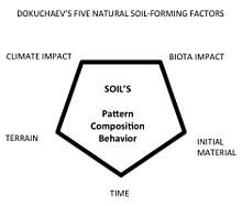 Vasily dokuchaev for Soil forming factors