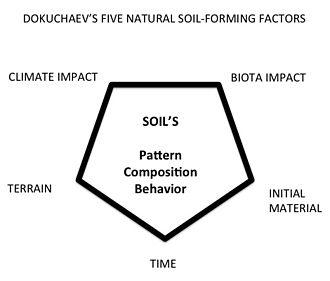 Vasily Dokuchaev - Dokuchaev's soil-formation factors