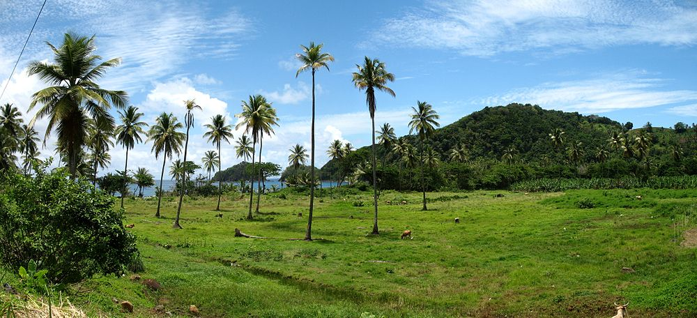 A photo of Dominica