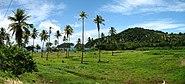 Dominica Panorama 5
