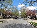 Douglass Neighborhood Washington DC.jpg