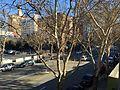 Downtown San Jose, California 1 2014-12-31.JPG
