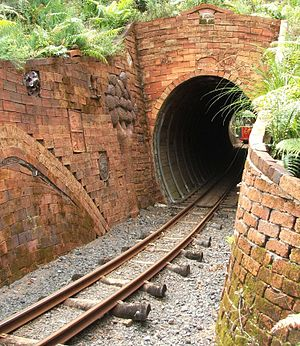 Driving Creek Railway - Tunnel NO 3, just beyond the fourth reversing point at Horopito. The railcar Linx can just be seen at the far end of the tunnel.