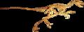 Dromaeosaurus Clean.png