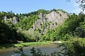 Dunajec Gorge - Limestone Rocks 1.jpg