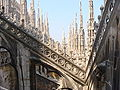 Duomo di Milano 1.jpg