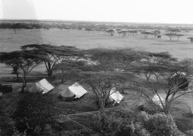 File:ETH-BIB-Camp Serengeti von Hügel aus fotografiert-Kilimanjaroflug 1929-30-LBS MH02-07-0496.tif