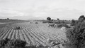 ETH-BIB-Umgebung von Madrid mit Guadarrama-Gebirge-Mittelmeerflug 1928-LBS MH02-04-0198.tif
