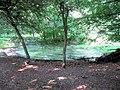 Eastern Pond near the Monument, Ashridge - geograph.org.uk - 1377898.jpg