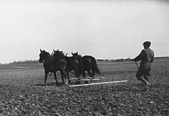 Eatonville, Toronto - Farmhand working on the Eaton farm in 1922.