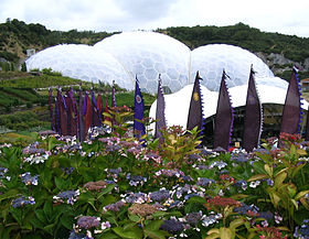 Image illustrative de l'article Eden Project