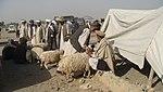 Eid markets (16478190041).jpg