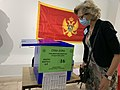 Election observation, Montenegro, 30 August 2020.jpg