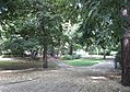 Elsapark Leipzig 2017 001.jpg
