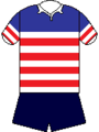Emu Jersey 1980's.png