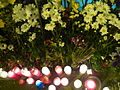 Estació de Sant Gervasi amb flors, espelmes i missatges per la mort d'en Alfonso Bayard P1470959.jpg