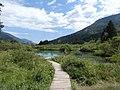 Estany de Zalenci, Eslovènia (agost 2013) - panoramio.jpg